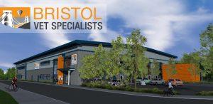 Bristol Vets Specialists image