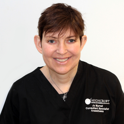 Joanna Murrell, RCVS Specialist in Veterinary Anaesthesia at Highcroft Veterinary Specialists