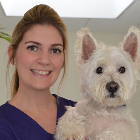 Laurie Rawlins,Highcroft Veterinary Group